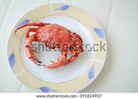 Top view of red tasty boiled crab on plate background, delicious seafood, closeup - stock photo