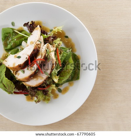 top view of roasted turkey breast fillet with leafy salad mix drizzled with gravy - stock photo