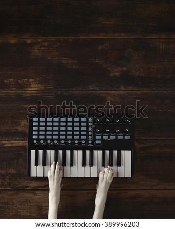 Top view two dog paws on midi piano compact wireless keyboard mixer plays melody. Vertical, music creation concept. - stock photo