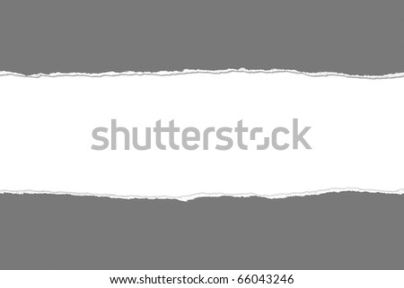 Torn gray Paper with space for text on white background - stock photo