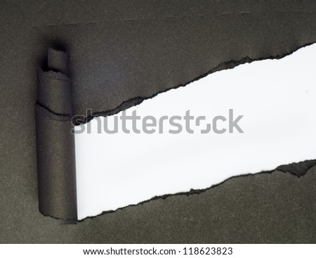 Torn Paper and space for text with white background - stock photo