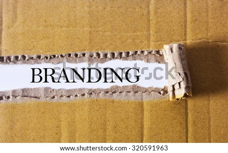 Torn paper box with word Branding - stock photo