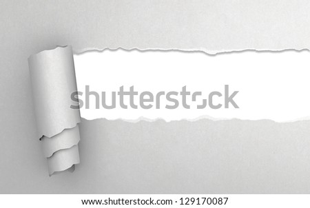 Torn paper with white texture - stock photo