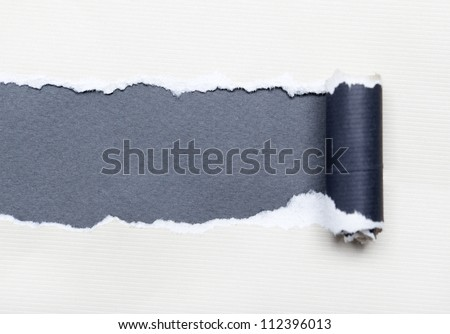 Torn white paper with grey space for your message. Paper roll - stock photo