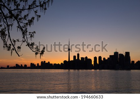 Toronto Sunset Silhouette with part of a tree on the left and copy space on the right - stock photo
