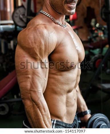Torso of muscular male bodybuilder working out in gym with dumbells in his hands - stock photo