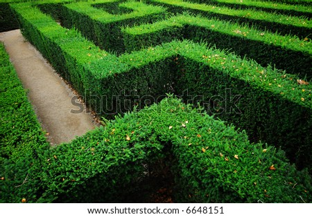 Tough problem - a garden labyrinth - stock photo