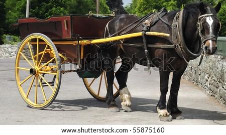 Tourist chaise - stock photo