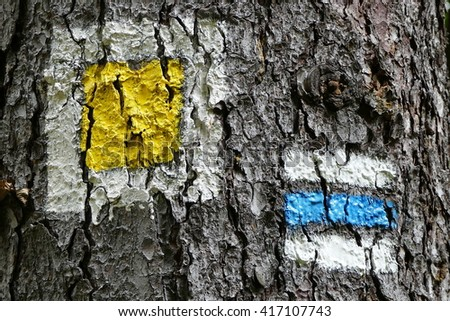 Tourist sign on the tree bark - stock photo