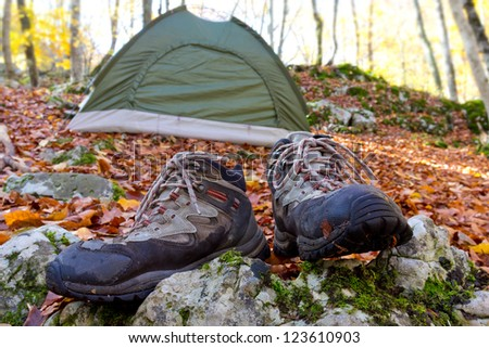 touristic camp in a forest - stock photo