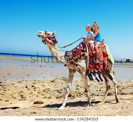 Tourists children riding camel  on the beach of  Egypt. - stock photo