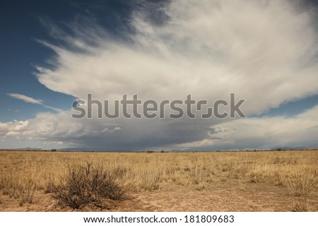 Towering cloud looms sideways over landscape of semi-desert grasslands in  winter/Huge Looming Cumulus Cloud over Winter Dry Grass Landscape/Huge mass of gray and white cloud with blue sky  - stock photo