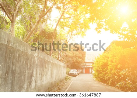 Town scenery with green trees and gray path in morning in Taiwan, Asia. - stock photo