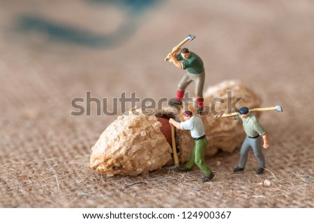 Toy figures of lumbermen with a peanut - stock photo