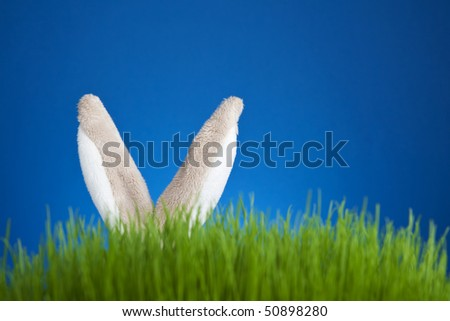 Toy stuffed rabbit hidden in grass - stock photo