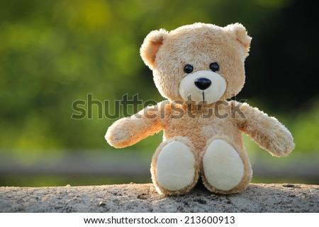 toy teddy bear on nature - stock photo