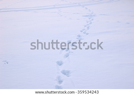 Traces of the recent past a man on the snow. - stock photo