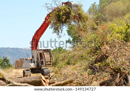 track hoe excavator clearing trees and brush from a hillside in preparation for a new commercial construction development - stock photo