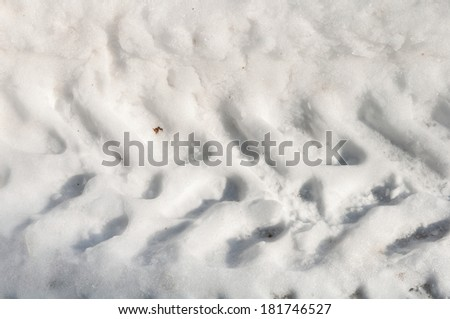 track imprints in the snow - stock photo