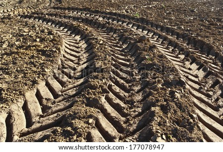 Track of a tractor on a plowed field - stock photo
