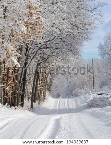 Tracks in the fresh snow on a rural Michigan country road. - stock photo