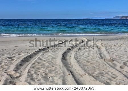 Tracks on white-sand beach Playa Conchal (Shell Beach) in Guanacaste, region of Costa Rica. - stock photo