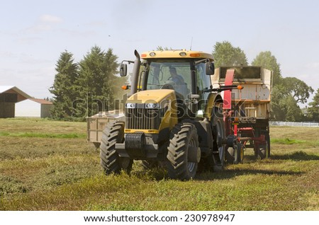 tractor and combine cutting and processing a field of mint for peppermint oil in Oregon;s Willamette valley - stock photo