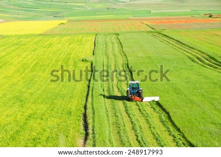 Tractor mowing green field - stock photo