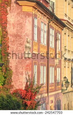 Traditional building covered with ivy on the streets of Prague, Czech Republic - stock photo
