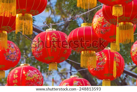 Traditional Chinese lantern hanging on tree in public park. - stock photo