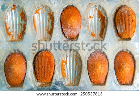 Traditional french madeleine cookies or cakes with  in a vintage - stock photo