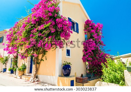 Traditional greek house with flowers in Assos, Kefalonia island, Greece. Blue door and blue window surrounded by magenta flowers. - stock photo