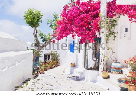 Traditional greek street with flowers in Amorgos island, Greece - stock photo