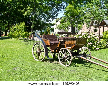 Traditional horse  carriage on natural background - stock photo