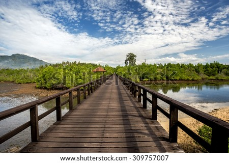 Traditional Indonesian landscape with mangrove and walkway, Sulawesi, Manado, indonesia - stock photo