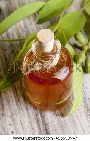 Traditional medicine: Eucalyptus essential oil bottle  with leaves and seeds on wooden background - stock photo