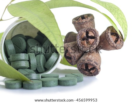 Traditional medicine: Green Eucalyptus branch with seeds and pills isolated on white background - stock photo
