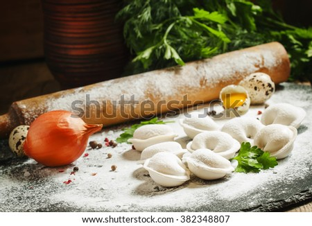Traditional Russian meat dumplings, cooking illustration, selective focus - stock photo