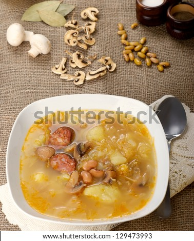 Traditional Slovak Cabbage soup - stock photo