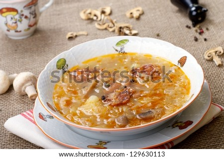 Traditional Slovak Cabbage soup with mushrooms - stock photo
