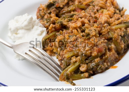 Traditional Turkish and East Mediterranean home-cooked minced beef and spinach, a popular comfort food. - stock photo