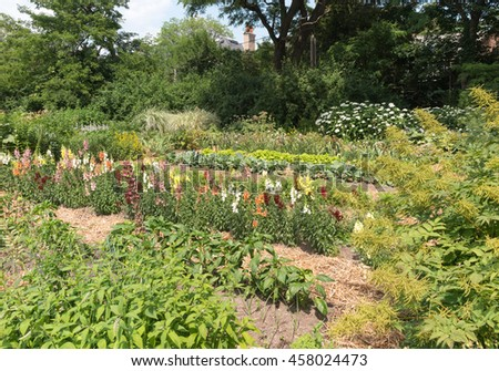 Traditional vegetable garden with flowers and greens - stock photo