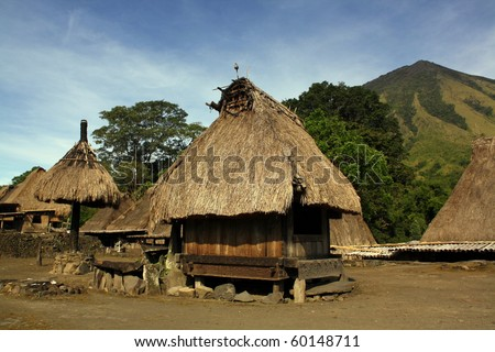 Traditional vilage in Bajawa (Flores - Indonesia) - stock photo