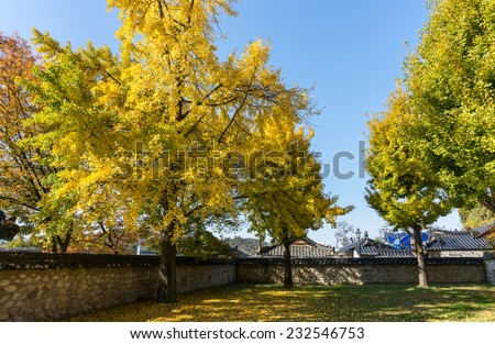 traditional walled Korean village homes with garden and parks, in autumn colors - stock photo