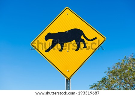 Traffic sign at the road side warns the drivers about cougar crossing next 2 miles - stock photo