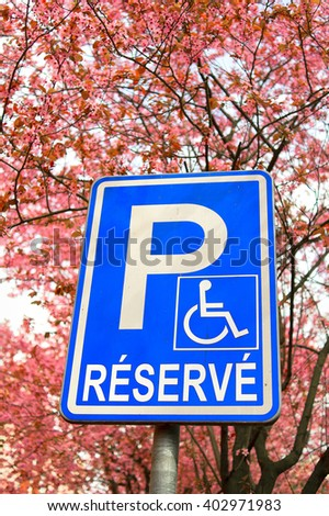 Traffic sign marking reserved parking lot for handicapped people. Blooming tree in the background as highlighting of positivity of accessibility for people with reduced mobility. - stock photo
