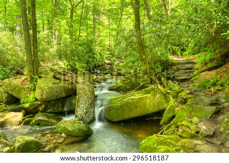 Trail leading to Ramsey Cascades in Great Smoky Mountains National Park. - stock photo