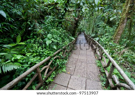 Trail through a lowland tropical rainforest in Costa Rica at La Paz Waterfall Gardens - stock photo