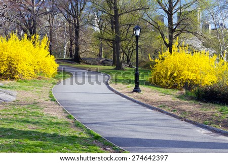 Trail through Central Park in Spring, New York City - stock photo