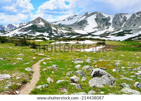 Trail through the alpine meadow with wild flowers in Snowy Range Mountains of  Medicine Bow, Wyoming in summer - stock photo